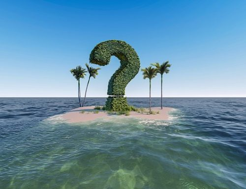 Seaweed Myths and Truths